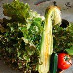 夏サラダと鯛カレー