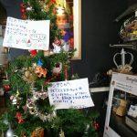 ルリヲンからクリスマスプレゼント♪