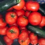 夏野菜の完熟トマトカレー