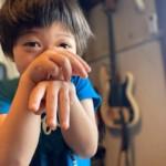 臨時休業のお知らせ◯5/16(土)◯
