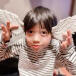 (月)(火)定休日です◯the天使の羽??w