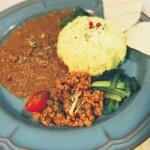 本日のハナ金カレーサービス◯大豆ミートの味噌キーマ&サラダ